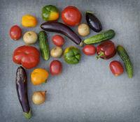 Variety of fresh vegetables on grey background.