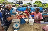 Fischverkauf auf dem Fischmarkt von Puerto Ayuro, Insel Santa Cruz, Galapagos Inseln, Ecuador