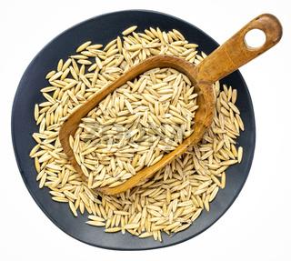 oat groats on a rustic scoop