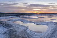 Alviso Salt Marshlands