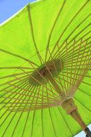 Gruener Sonnenschirm Ausschnitt