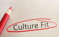 Culture Fit Hiring Concept