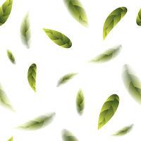 Fresh Green Tea Leaves Seamless Pattern