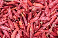 Red dried chili pepper heap close-up