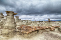 Bisti badlands ,petrified wood,New Mexico, USA