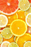 Citrus fruits collection food background oranges lemons limes portrait format grapefruit fresh fruit