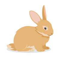 Cute rabbit icon isolated, small fluffy pet with long ears, domestic animal, vector illustration