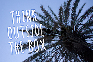 Handwriting text Think Outside The Box. Concept meaning Thinking of new and creative solution leads to success Tall palm tree blue sky ideas messages thoughts feelings reflections.