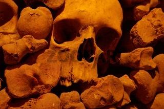 Skulls and bones in a wall