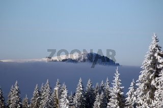Winterimpressionen aus der Feldberg-Region