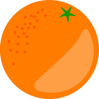 Orange Fruit Vector Isolated