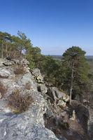 View from Fontainebleau, Ile-de-france, France