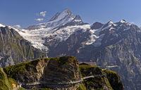 First Cliff Walk by Tissot mit Aussichtsplattform im Wandergebiet First