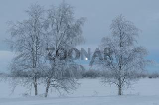 Winterlandschaft am Fluss Muonioaelven, Karesuando, Lappland