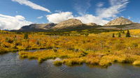 Marsh Area Rural Montana Territory American Rocky Mountains