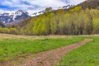Trail in Big Springs Park of Provo, Utah