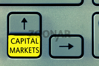 Writing note showing Capital Markets. Business photo showcasing Allow businesses to raise funds by providing market security