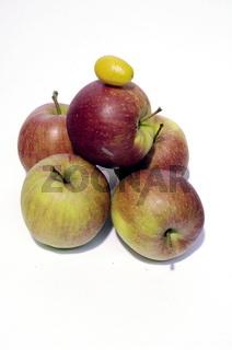 Aepfel mit kumquat