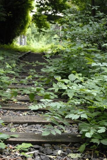 Stillgelegte Gleise in Hannover Linden IV