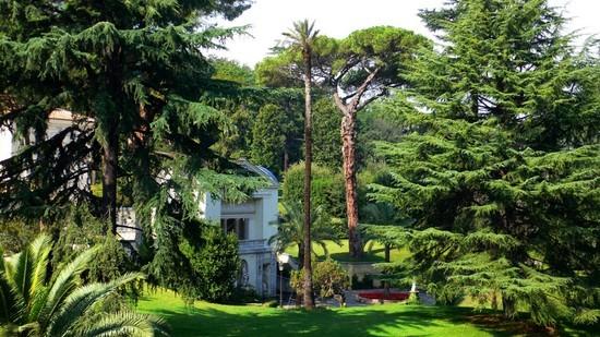 Garten des Vatikans
