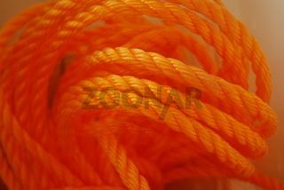 Tampen orange