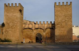 Mallorca, Alcudia