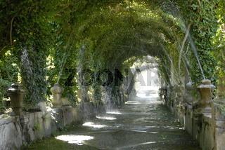 Mallorca Gärten von Alfabia