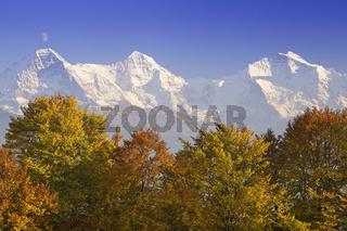 Blick von Beatenberg auf Eiger, Moench, Jungfrau, Interlaken, Herbst, Schweiz, Berner Oberland, Swiss Alps, Switzerland