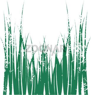 Grass graphic