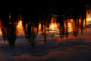 Reflected Trees at freezed Lake, evening light, sweden, swedisch Lappland, Europe, North Scandinavia