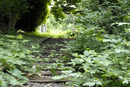 Stillgelegte Gleise in Hannover Linden V