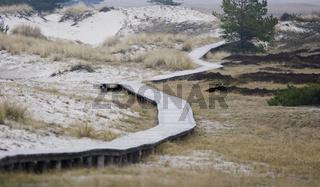 Wanderweg im Naturschutzgebiet Darßer Ort