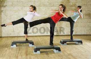 Group of the exercising women