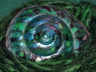 Snail in Art