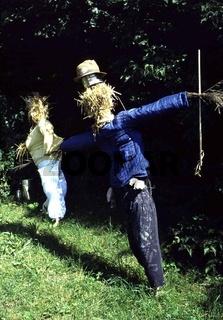Vogelscheuche, Scarecrow, schräge Vögel