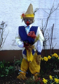 Vogelscheuche, Scarecrow, Lehrer
