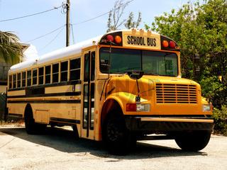 Schulbus - Scool Bus