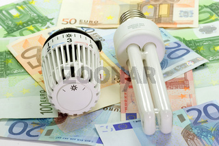 Energiesparlampe Energy saving light bulb