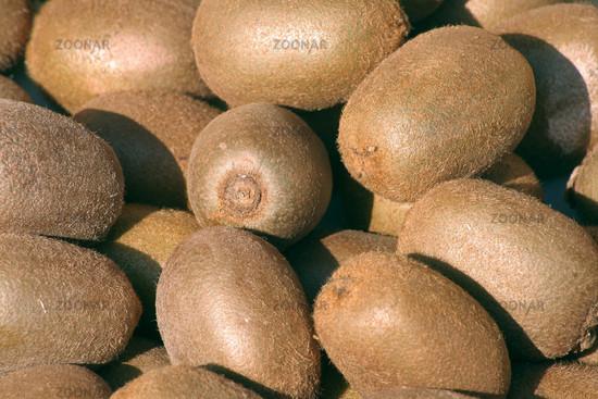 Kiwi fruits   Kiwis