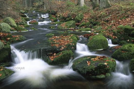 kleine ohe, mountain torrent, wildbach, np bavarian forest, bayrischer wald, bayner, bavaria, germany, deutschland,