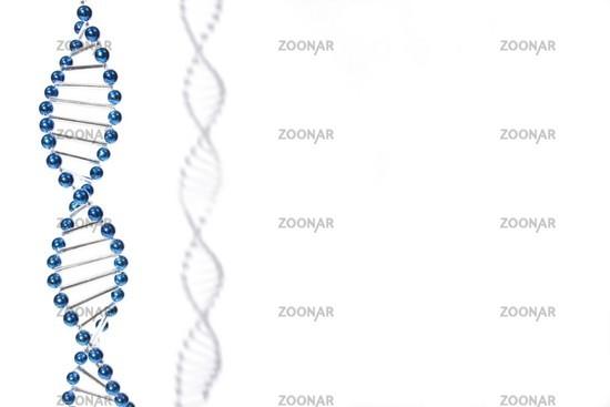DNS 2