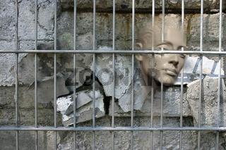 Lebende Mauer