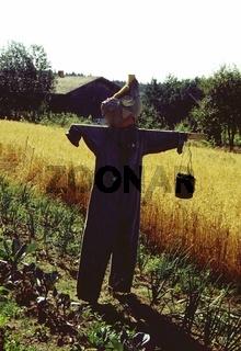 Vogelscheuche, Scarecrow, Blaumann