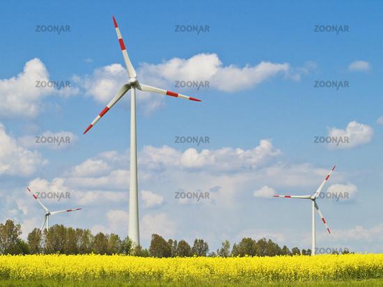 erneuerbare Energie | renewable energy