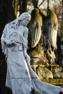 Friedhof in Warschau, cemetery in Warsaw