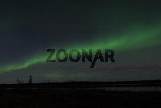 Nordlicht (Aurora borealis) und Grosser Wagen im Sternbild des Grossen Baeren (Ursa maior), Gaellivare, Lappland, Norrbotten, Schweden, Skandinavien, Europa