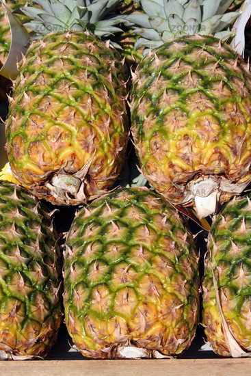 Pineapples   Ananas