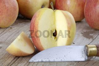 Apfel, Rebella, Apples, Malus domesticus, Aepfel, innen, Studio, indoor
