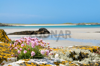 Wunderschöner Sandstrand bei Clifden - Gorgeous sandy beach of Clifden