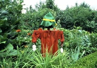 Vogelscheuche, Scarecrow, Altkleider